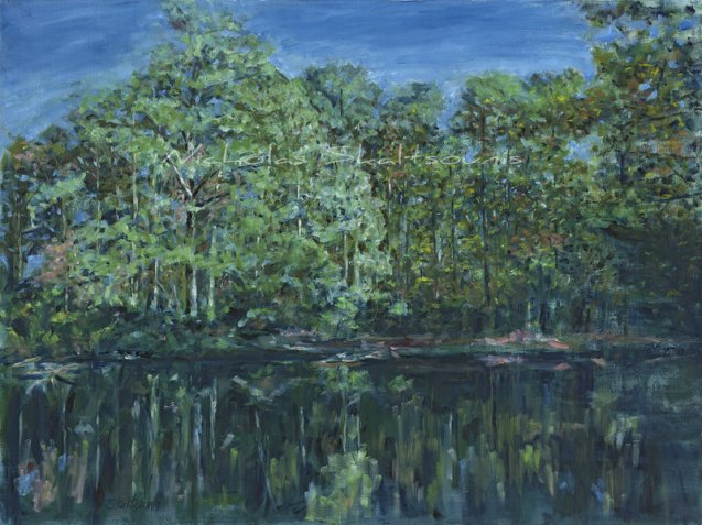 River Park, Woodland Images II, Oil on Canvas, 18x24