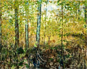 Woodland Encounter, Oil on Canvas, 24x30