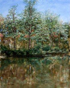 Woodland Shadows, Oil on Canvas, 24x30